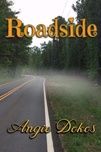 Roadside cover on Amazon